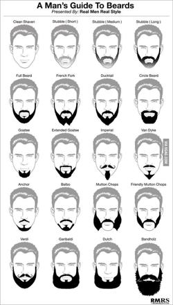 different style de barbe
