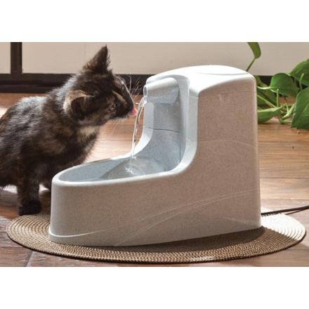 fontaine chat drinkwell