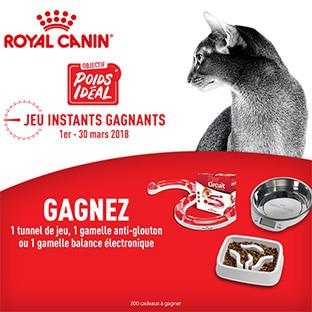 jeu royal canin