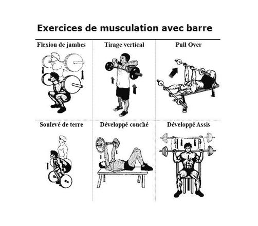 musculation barre exercice